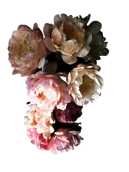 Peony_47-removebg-preview