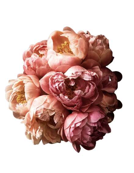 Peony_52-removebg-preview